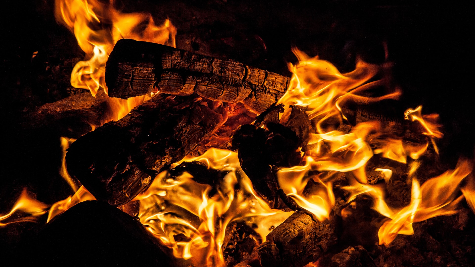 Kaminholz Breuer | Perfekte Brennholz | Buche und Eiche