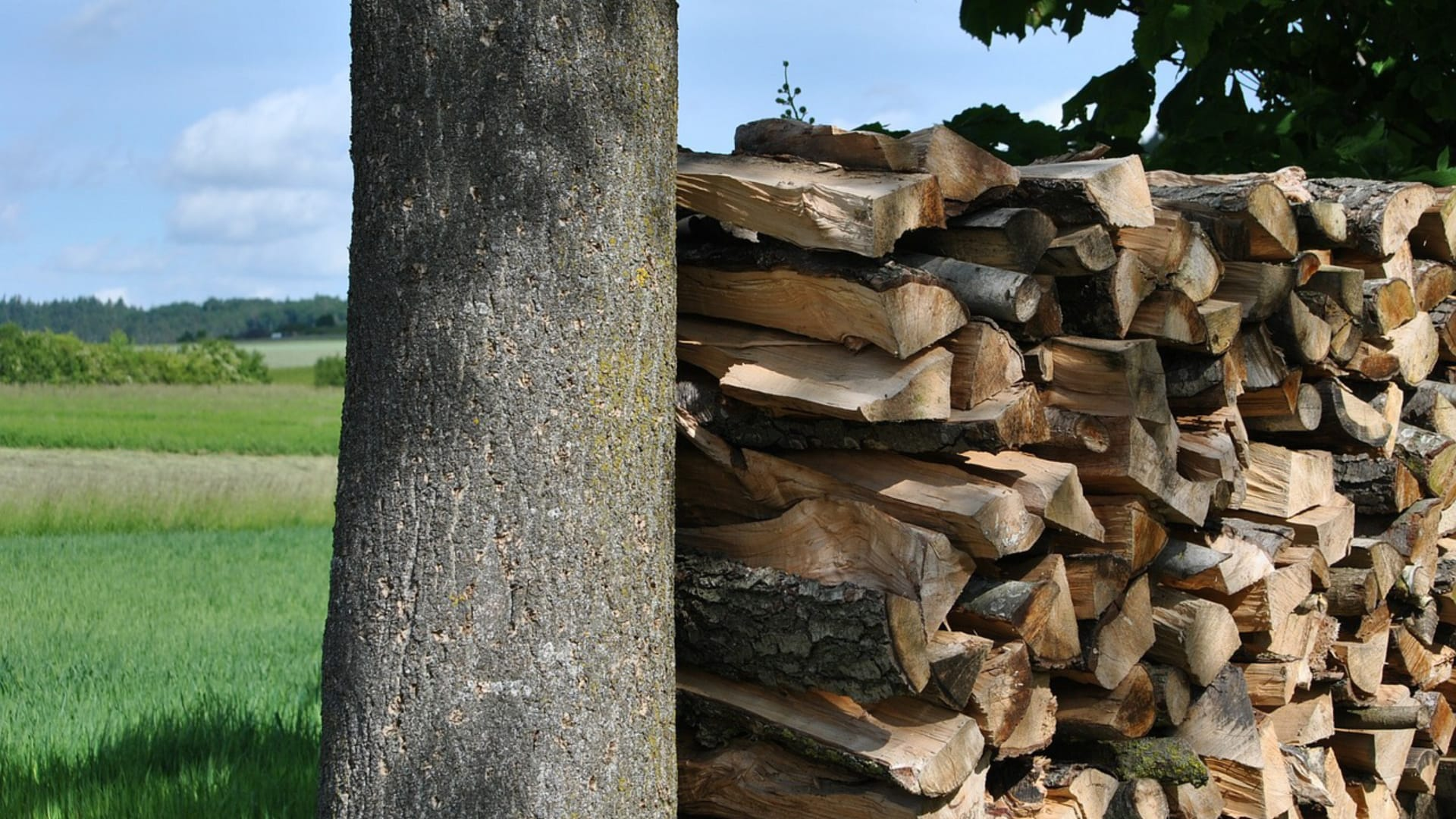 Kaminholz Breuer | Brennholz | Luftzirkulation